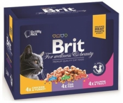 Brit Premium Cat Family Plate Poultry & Fish 12x100g