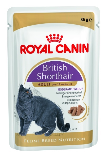 Royal Canin kapsička British Shorhair 85g